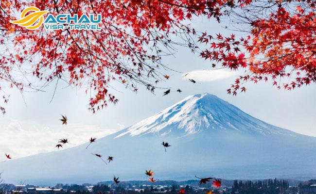 Kinh nghiệm xin visa du lịch Nhật Bản tự túc thành công