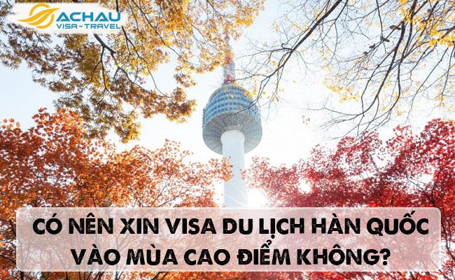 Có nên xin visa du lịch Hàn Quốc vào mùa cao điểm không?