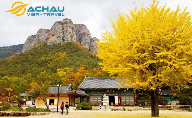 Du khách Việt Nam du lịch Hàn Quốc sẽ nhận được nhiều sự hỗ trợ trực tiếp từ KTO 1
