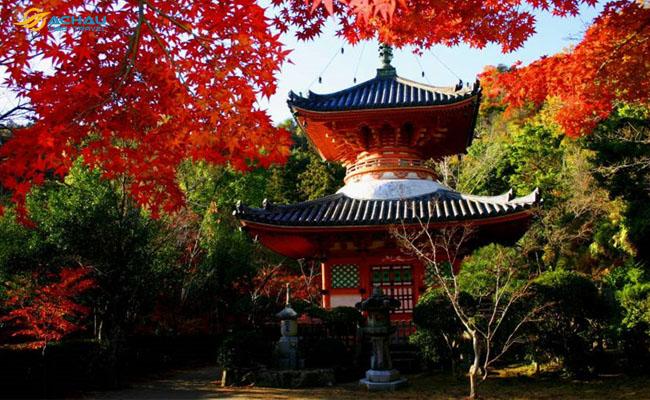 Du lịch Hiroshima 6