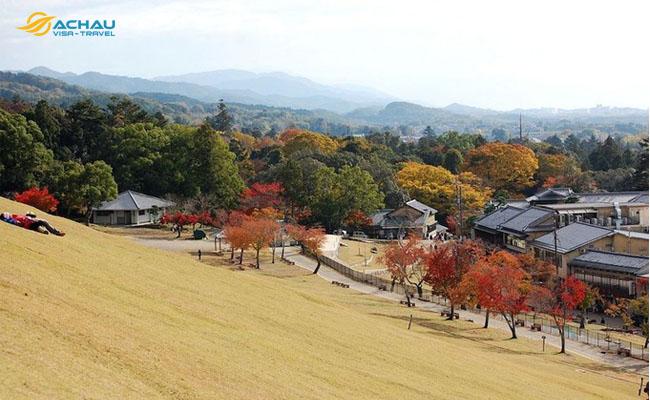 Yamayaki -  lễ hội đốt cỏ ở Nhật Bản 3