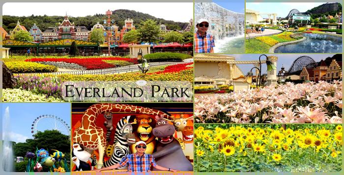 Kết quả hình ảnh cho công viên giải trí everland hàn quốc