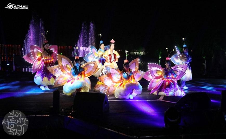 Lễ hội mùa hè ở Hàn Quốc 5