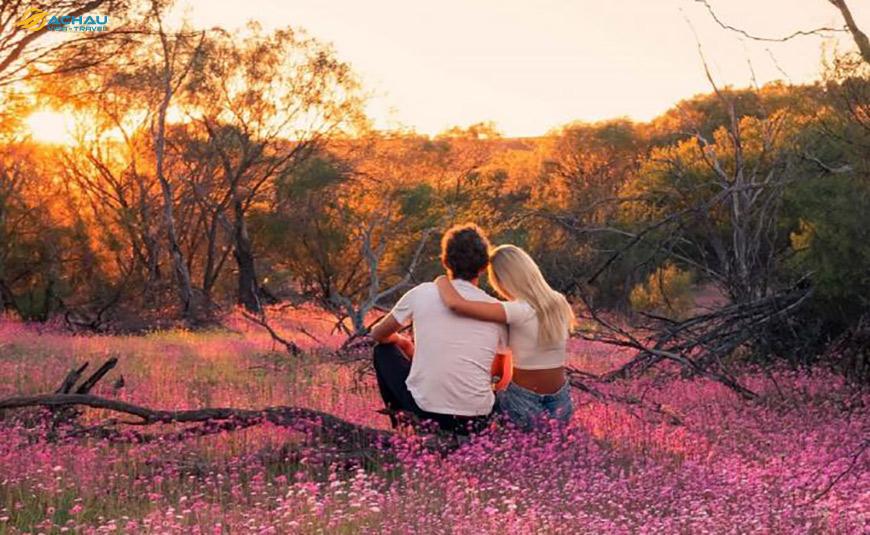 Trải nghiệm mùa xuân vào tháng 11 trên đất nước Úc 5