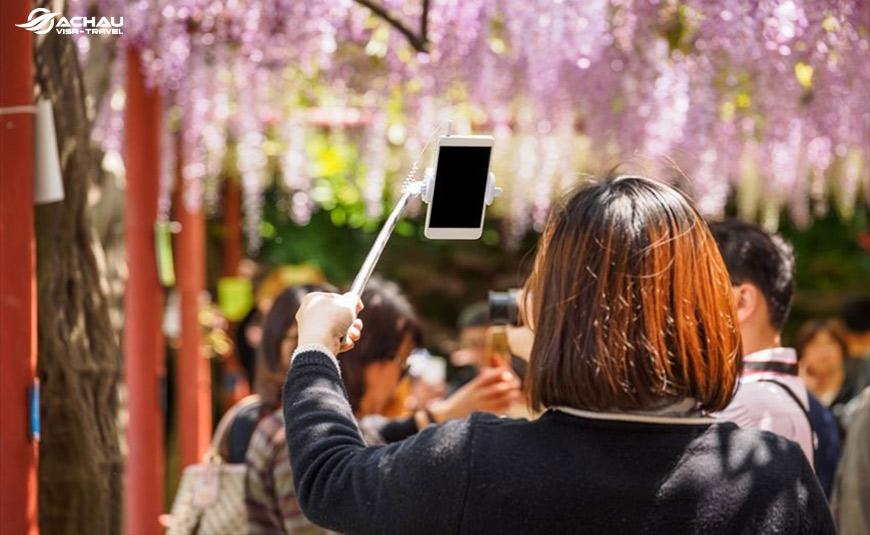 Nắm rõ các nguyên tắc quay phim, chụp ảnh khi du lịch Nhật Bản 2