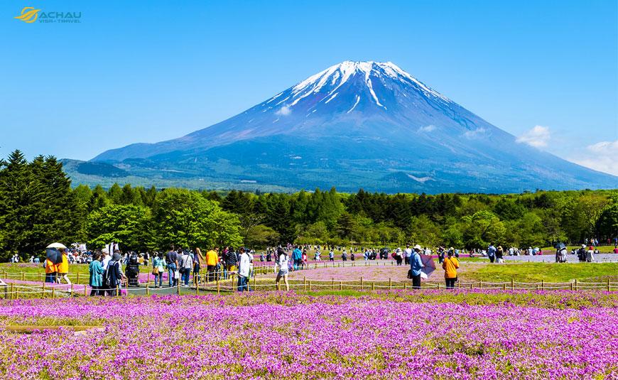Vì sao xin visa du lịch Nhật Bản ngày càng khó khăn? 1